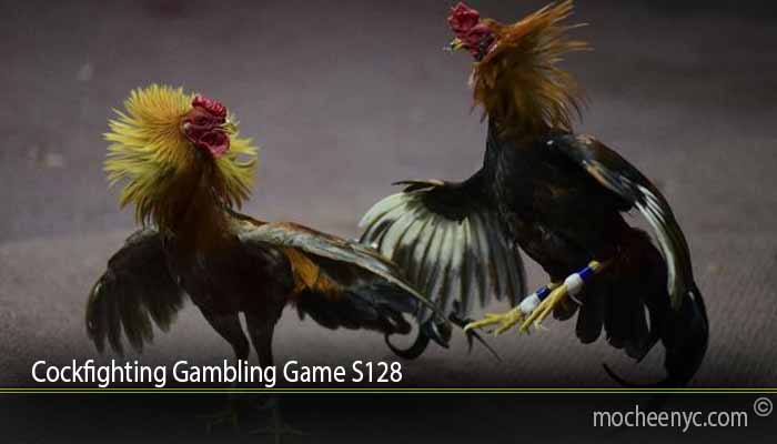Cockfighting Gambling Game S128